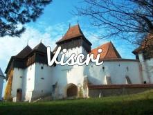 VISCRI1